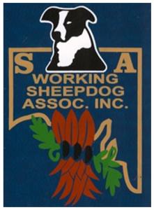 SAWSDA logo blue